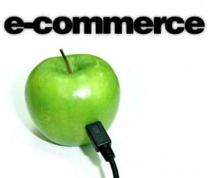 logestique e-commerce